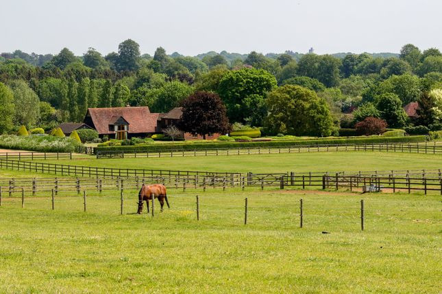 Country house for sale in Suffield Lane, Puttenham, Guildford, Surrey GU3