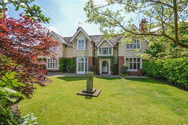 Thumbnail Cottage for sale in The Bourne, Ware, Hertfordshire