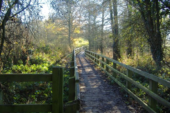Country Park Walks