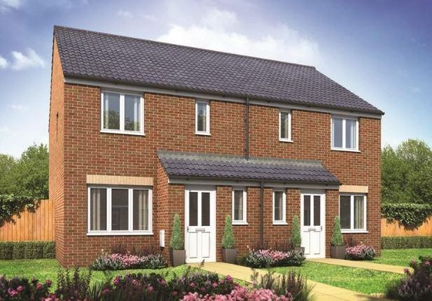 Thumbnail Semi-detached house for sale in Plot 66 Hanbury, Hampton Gardens, Hampton, Peterborough