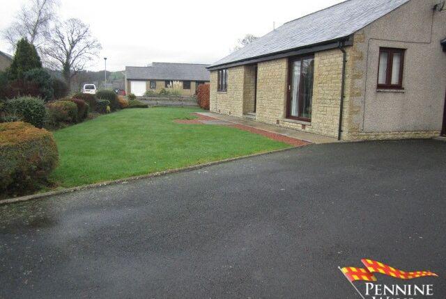 Driveway of Irthing Park, Gilsland, Cumbria CA8