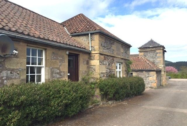 Thumbnail Semi-detached house to rent in Ladybank, Cupar