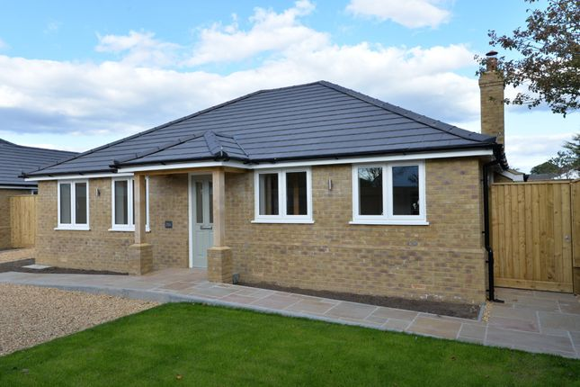 Thumbnail Detached bungalow for sale in Lavender Road, Hordle, Lymington