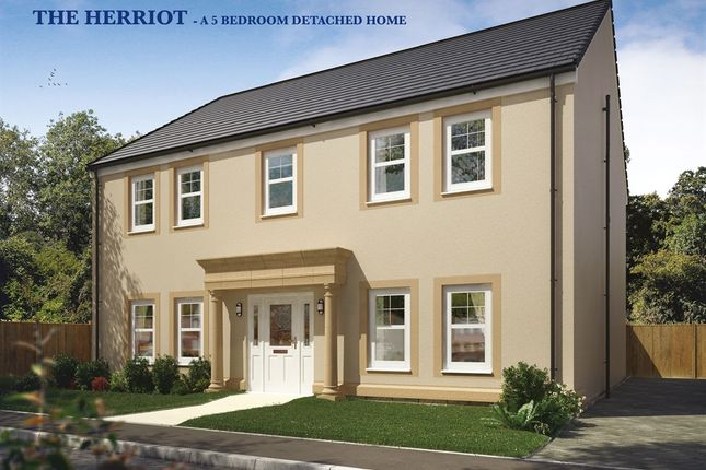 "Thumbnail Detached house for sale in ""The Herriot"" at Capelrig Road, Newton Mearns, Glasgow"