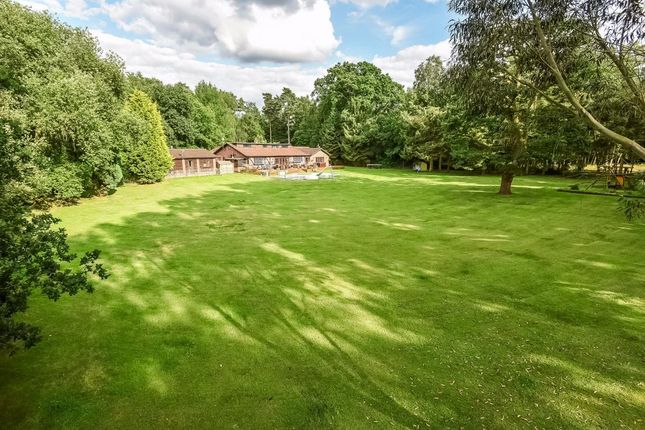 Thumbnail Detached house for sale in Lower Wokingham Road, Crowthorne