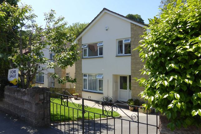 Thumbnail Detached house for sale in Trinity Gardens, Ilfracombe