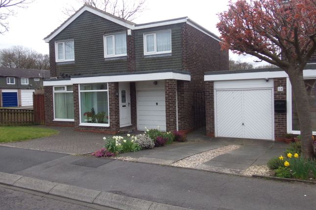 Thumbnail Detached house for sale in Ashkirk Way, Seaton Delaval, Whitley Bay