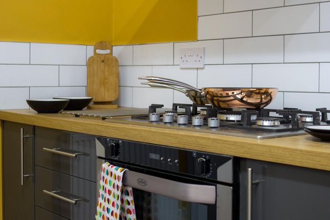 Thumbnail Terraced house to rent in College Avenue, Leicester