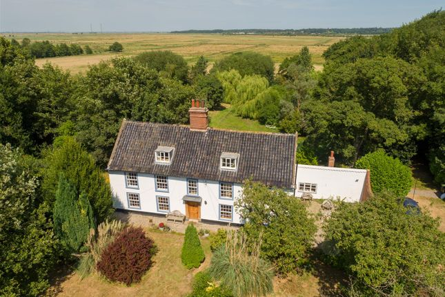 Thumbnail Detached house for sale in Haddiscoe, Norwich