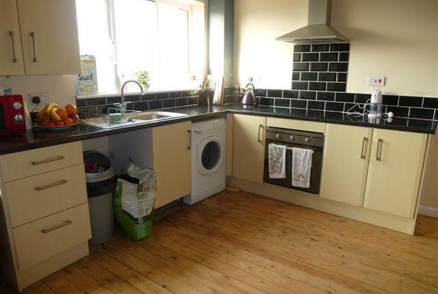 Thumbnail Property to rent in Fitch Drive, Brighton