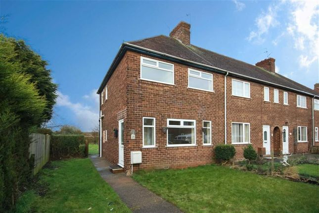 Thumbnail Terraced house to rent in Albermarle Close, Brough