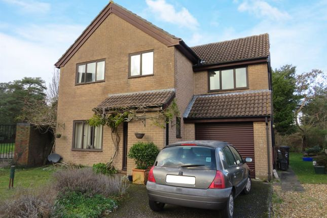 Thumbnail Detached house for sale in Shaw Drive, Wareham