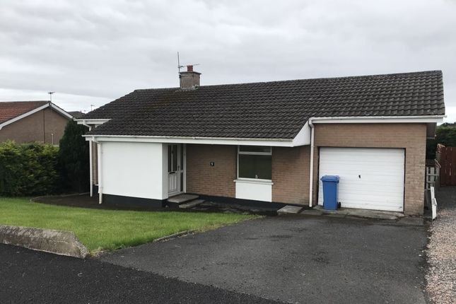 Thumbnail Bungalow for sale in Thornleigh Avenue, Newtownards