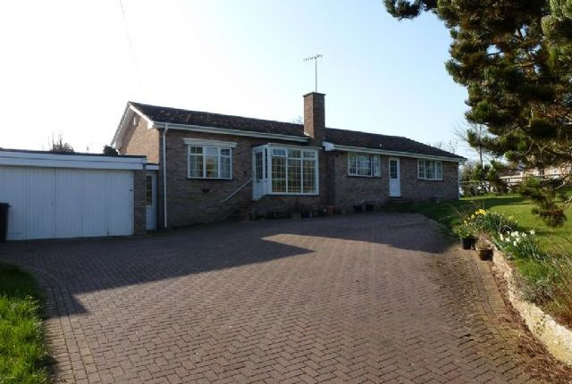 Thumbnail Detached bungalow to rent in Three Double Bedroom Detached Bungalow, Radford, Nr Inkberrow, Worcester