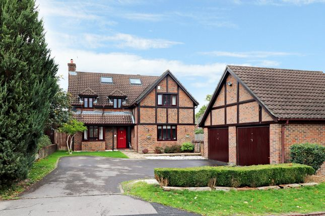 Thumbnail Detached house for sale in Brooklynn Close, Waltham Chase, Southampton