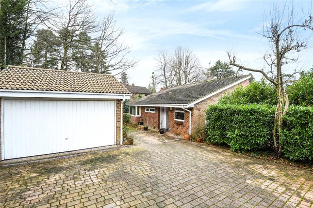 Thumbnail Detached bungalow for sale in Cavendish Meads, Sunninghill, Berkshire
