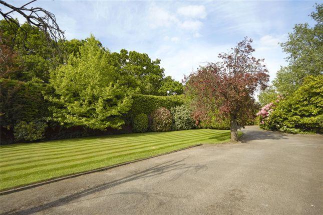Picture No. 21 of Guildford Road, Normandy, Guildford, Surrey GU3