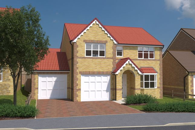 Thumbnail Detached house for sale in Tree Tops, Common Road, South Kirkby