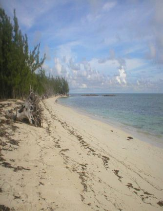 Land for sale in Central Andros, The Bahamas