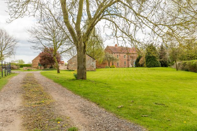 Thumbnail Equestrian property for sale in Haywood Farm, Haywood, Doncaster, South Yorkshire