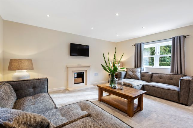 Thumbnail Detached house for sale in Chesterfield Road, Oakerthorpe, Alfreton