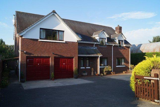 Thumbnail Detached house for sale in Llanfihangel Ar Arth, Llandysul
