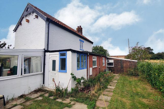 Thumbnail Cottage to rent in Low Road, Wickhampton, Norwich