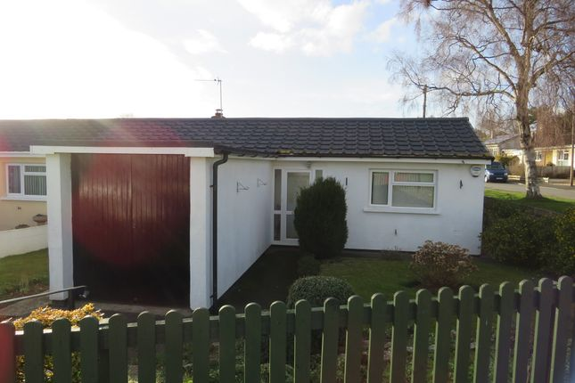 Thumbnail Terraced bungalow for sale in Tarrs Avenue, Kingsteignton, Newton Abbot