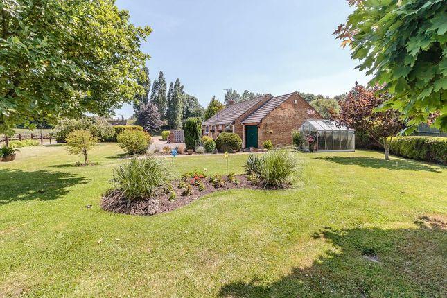 Thumbnail Detached bungalow for sale in Maldon Road, Margaretting, Ingatestone