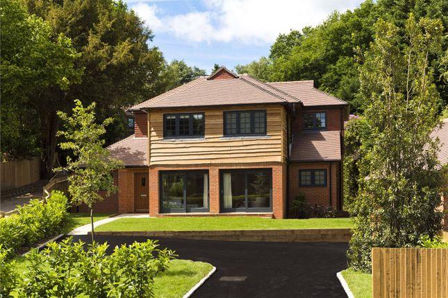 Thumbnail Detached house for sale in Roffes Lane, Chaldon