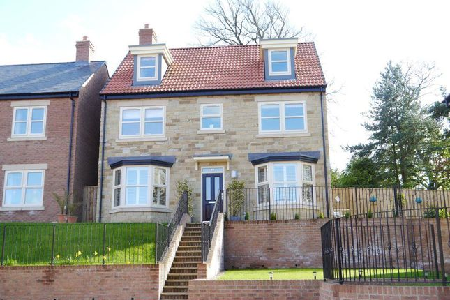 Thumbnail Detached house for sale in The Limes, Willoughby Park, Alnwick
