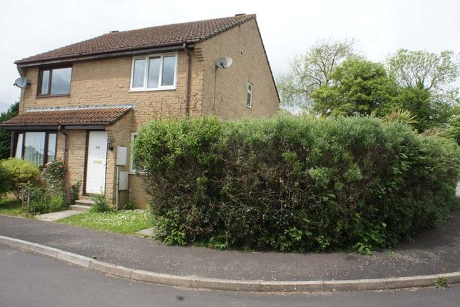 Thumbnail Semi-detached house to rent in The Beeches, Beaminster