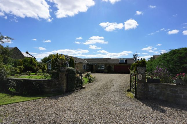 Thumbnail Detached bungalow for sale in Swale Pasture Lane, Catterick Village