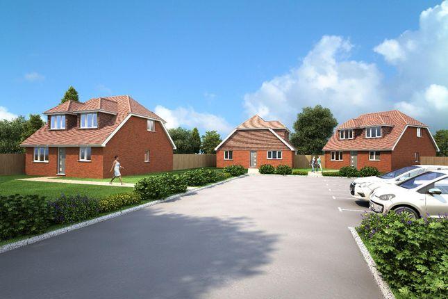 Thumbnail Property for sale in Pilgrims Lane, Seasalter, Whitstable