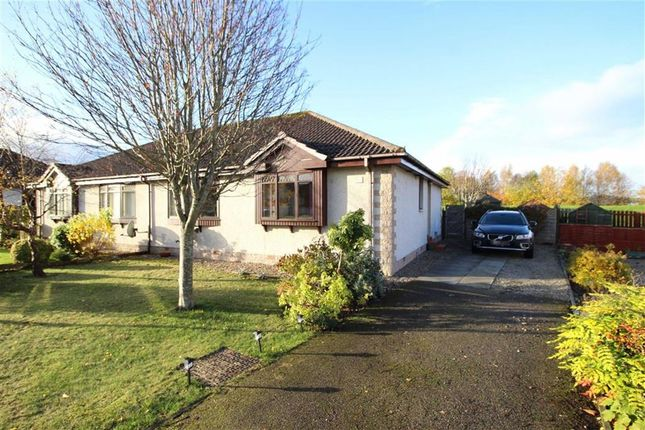Thumbnail Semi-detached bungalow for sale in 17, Miller Road, Inverness