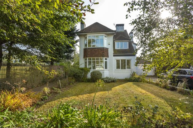 Thumbnail Detached house to rent in Elrington Road, Hove, East Sussex