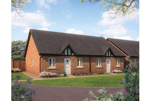 """Thumbnail Property for sale in """"The Elm"""" at Marley Close, Thurston, Bury St. Edmunds"""