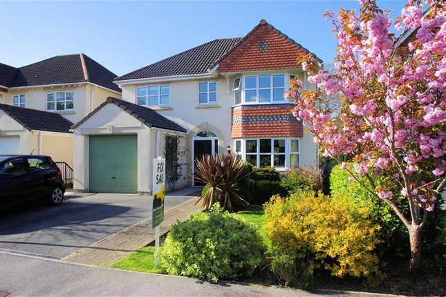 Thumbnail Detached house for sale in Upcott Valley, Okehampton, Devon