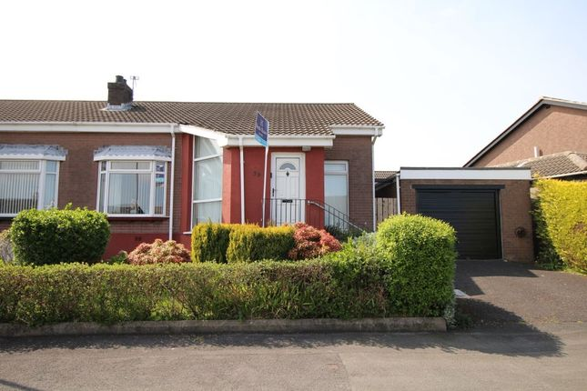 Thumbnail Bungalow for sale in Mandeville Avenue, Newtownards