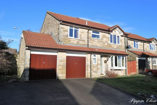 Thumbnail Detached house for sale in Pippin Close, Peasedown St. John, Bath