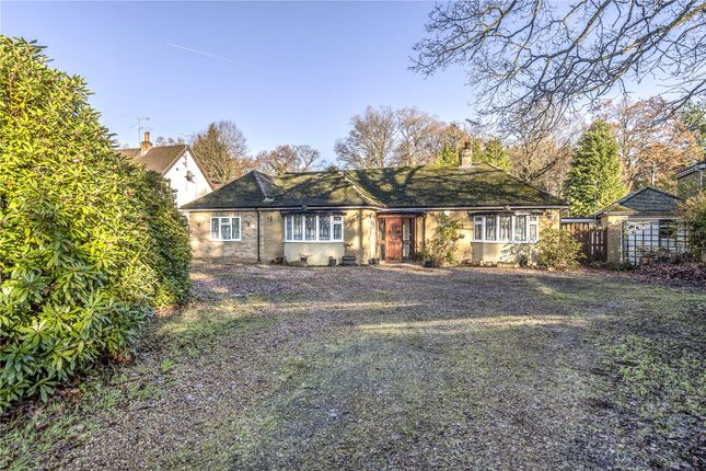 Thumbnail Bungalow for sale in Reading Road, Finchampstead, Wokingham, Berkshire