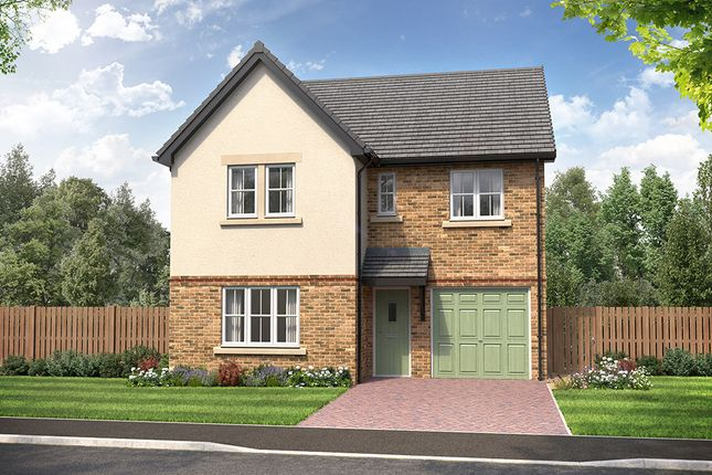 """Thumbnail Detached house for sale in """"Sanderson"""" at Newbury Way, Carlisle"""
