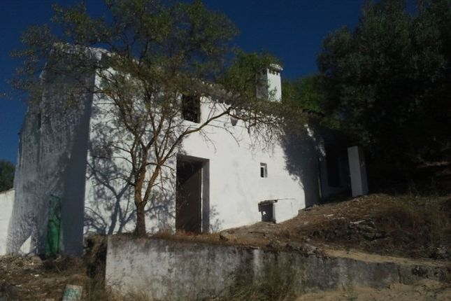 Thumbnail Farm for sale in Torre Alhaquime, Andalucia, Spain