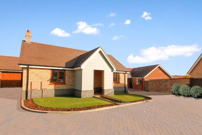 Thumbnail Bungalow for sale in Broadlands Way, Ipswich