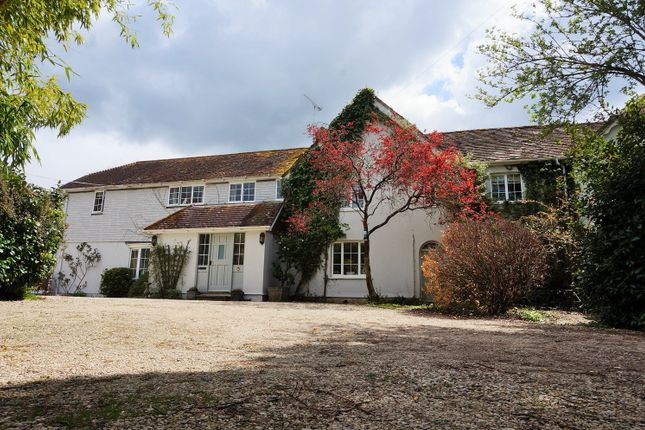 Thumbnail Semi-detached house for sale in Gold Hill, Blandford Forum