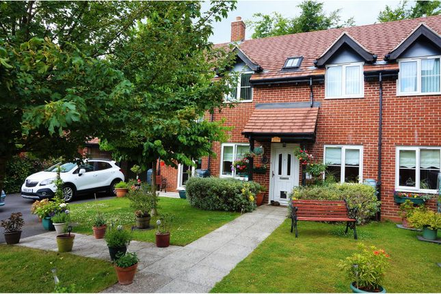Thumbnail Flat for sale in Laura Close, Winchester
