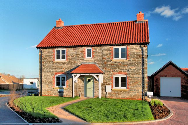 Thumbnail Detached house for sale in The Paddocks, Tytherington, South Glos