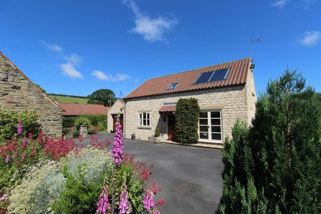 Thumbnail Detached house for sale in Main Street, Oldstead, York