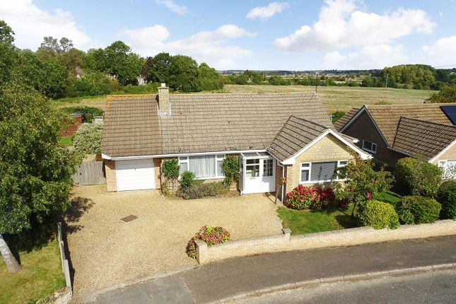 Thumbnail Detached bungalow for sale in St. Peters Road, Oundle, Peterborough