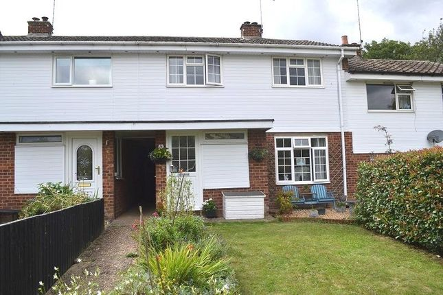 Thumbnail Terraced house for sale in Roundhaye, Puckeridge, Ware